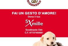 Dona il tuo 5 x mille alla nostra associazione onlus e salverai la vita a tanti  dei nostri amici animali!!